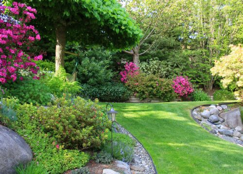 Professional Commercial Landscape Maintenance - Commercial Landscaping Services: Design To Construction