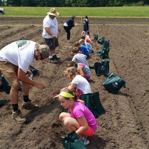 Elementary school children planting pumpkins and sunflowers at Rutland Regional Medical Center.