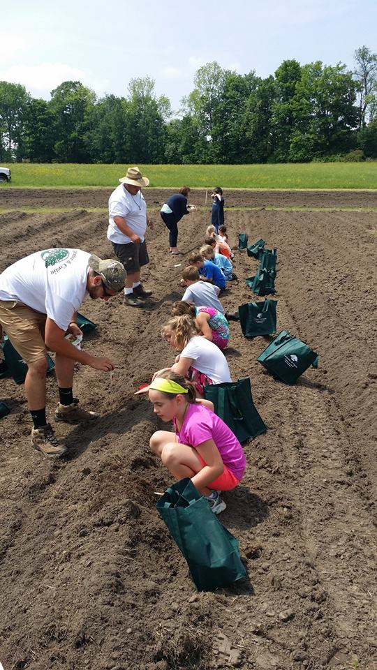 Elementary school children planting pumpkins and sunflowers at Rutland Regional Medical Center.