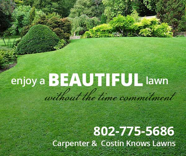 Lawn Care Experts: Fertilizing, Weed