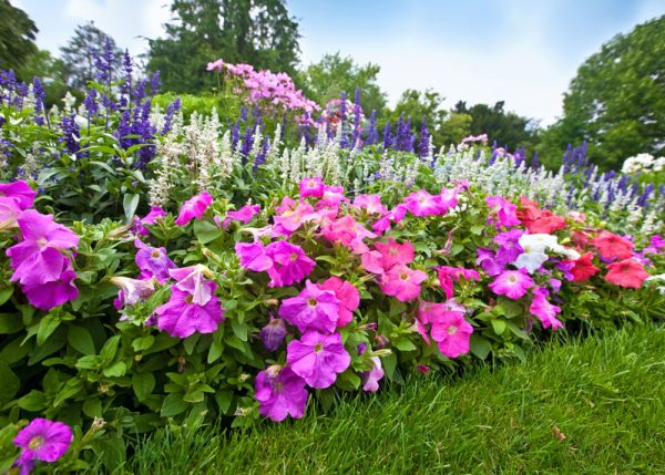 residential-landscaping-services-flowers-vermont