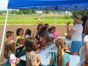 Kids learning about planting sunflowers and pumpkins